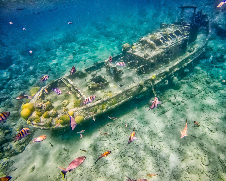 Tugboat Snorkeling Curacao