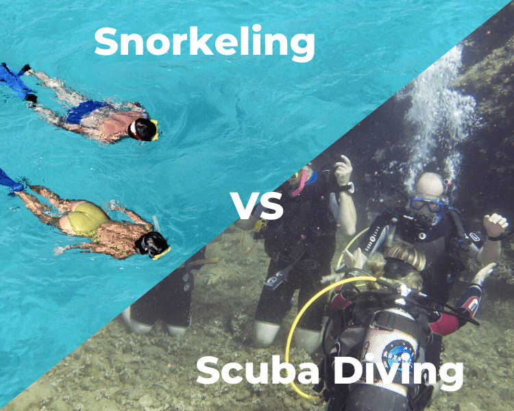 Split Photo of couple snorkeling and group scuba diving, text overlay snorkeling vs scuba diving