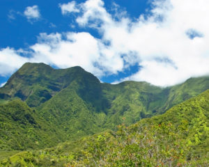 view overlooking mountains at 'IAO VALLEY STATE PARK