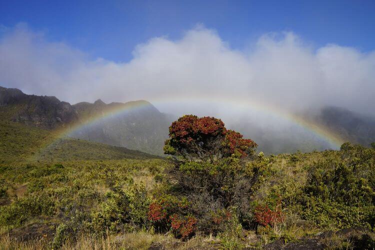Rainbow over Waihee Ridge Trail- West Maui Hike