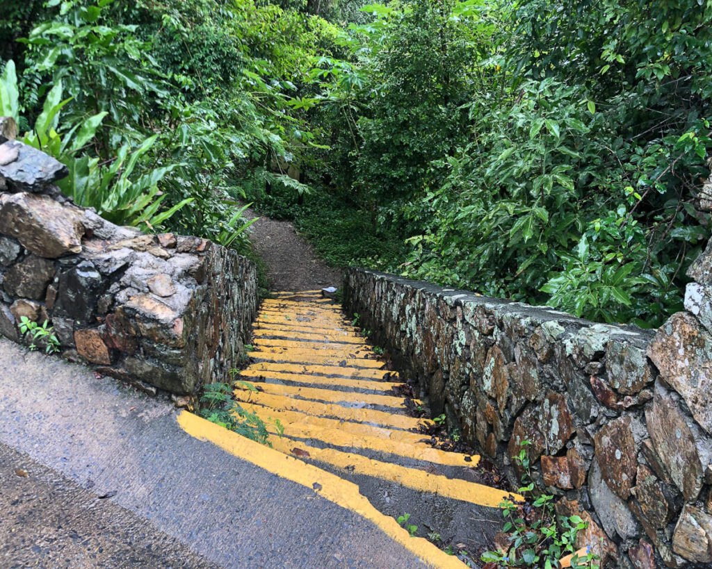 stairs leading down from road to Reef Bay Trail on St. John, USVI
