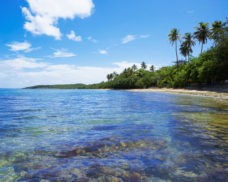 view from water of the beach at seven seas near Fajardo, Puerto Rico