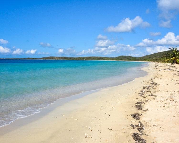 blue beach on Vieques, Puerto Rico