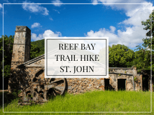 plantation ruins, text overlay, reef bay trail hike, st. john