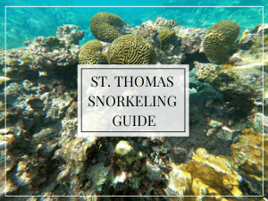 St. Thomas Snorkeling Guide text overlay, underwater view of coral
