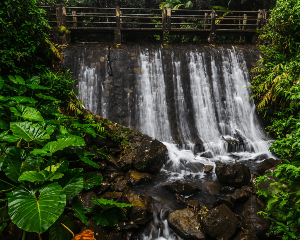 footbridge over waterfalls on caimitillo trail in El Yunque