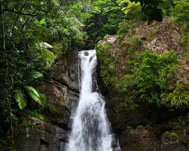 La Mina Waterfall, El Yunque Puerto Rico