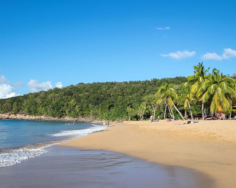 Anse de la Perle Beach, Guadeloupe