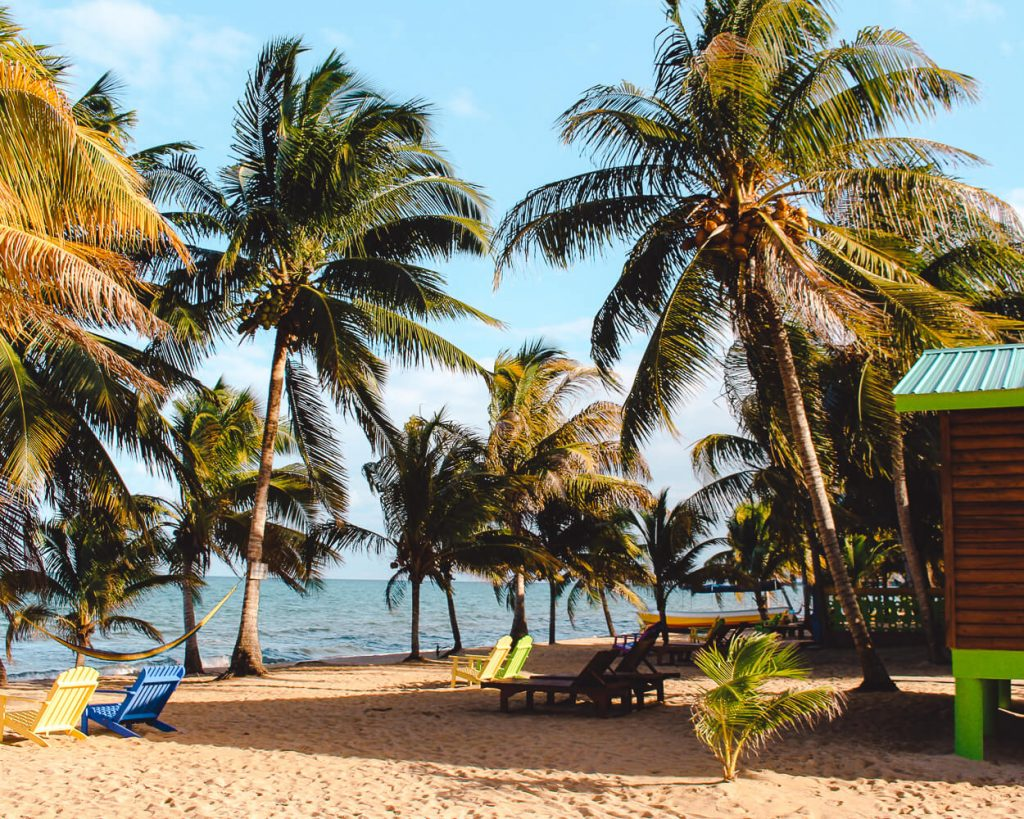 Beach House and palm trees along the shore in Hopkins, Belize